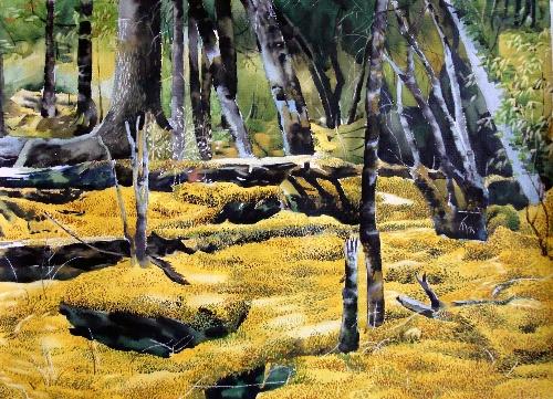 我的水彩画  秋天的黄树林>> - 国画圈 - 文学艺术