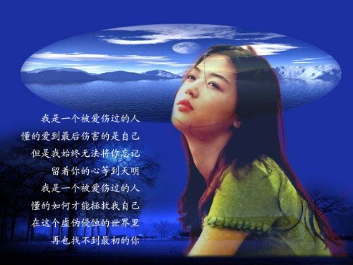 一个人的旅途 歌词_我是个被爱伤过的人(歌词)-心情-搜狐博客