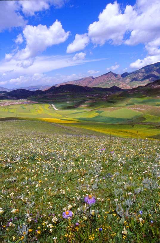 描写西藏风景的句子