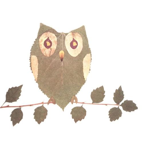 树叶拼贴小动物18款